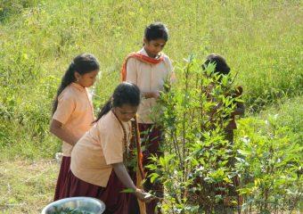 At Veda Bharati Ashram